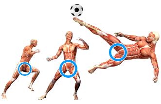 pubalgie-douleur-du-sportif